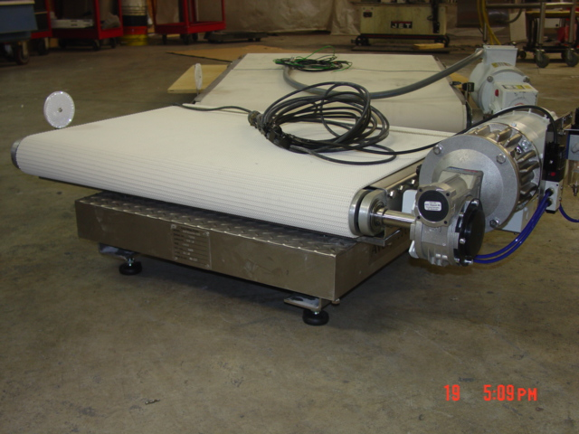 Low Profile Scale Conveyor